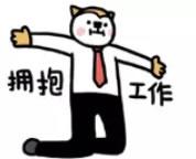 南阳市人才市场今日起将有四场专项招聘会